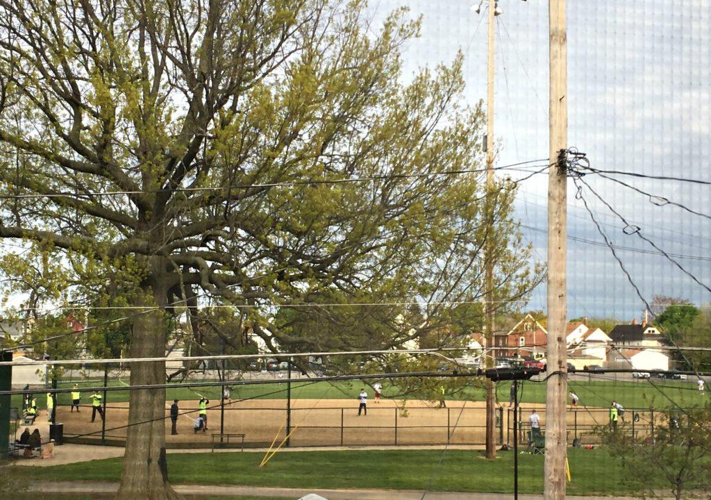 Battle of Birdtown Celebrity Softball Game