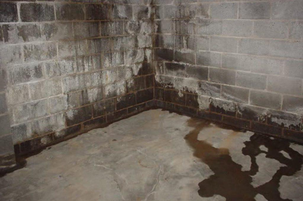 LakewoodAlive's Waterproofing Basics Workshop