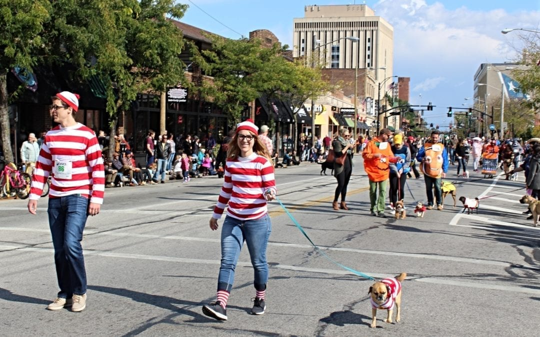 How to be Top Dog at the 12th Annual Spooky Pooch Parade